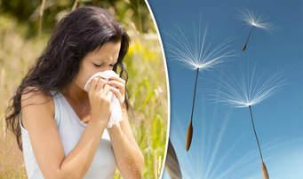 allergies 1